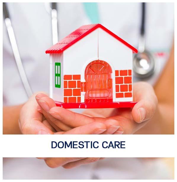 Domestic-care